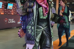 900-cosplay-borderlands-2
